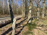 thumbnail - Wanderweg A2