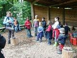 thumbnail - Tour: Walderlebnis für Kinder