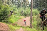 thumbnail - Bikepark Trippstadt