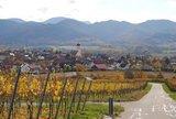 thumbnail - Blick auf Kirchhofen