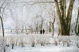 thumbnail - Der Kurpark im Winter (Beginn des Naturlehrpfades)