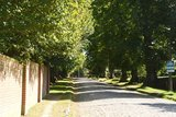 thumbnail - Allee in Grambow