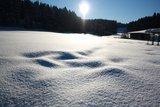thumbnail - Landschaft Loipen Brilon
