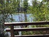 thumbnail - Ruhebänkle mit wunderschöner Aussicht auf den Badesee