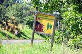 thumbnail - Wegweiser zum Walderlebnispfad