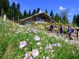 thumbnail - Die Berghütte Lauterbad
