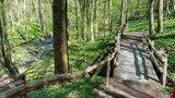 thumbnail - Holzbrücke im Saubachtal