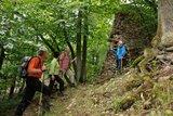 thumbnail - Ruine Wildenstein
