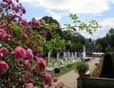 thumbnail - Rosengarten Forst
