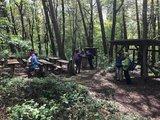 thumbnail - Der Waldforscherpfad