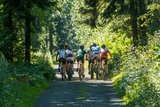 thumbnail - Mountainbiker im Landkreis Altenkirchen