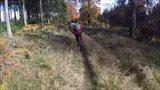 thumbnail - schöner Waldpfad