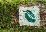 thumbnail - Beispiel für Markierung an Baum oder Fels