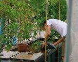 thumbnail - Urban Farming - Berlin wird grüner