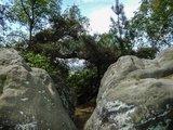thumbnail - Riesenbecker Felsen