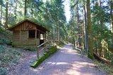 thumbnail - die Tannenhütte am Teuchelweg