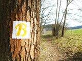 thumbnail - Markierungszeichen Brehm-Rundwanderweg