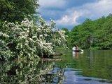 thumbnail - Kanufahrer erkunden die urwüchsigen Ufer der Peene