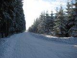 thumbnail - Winterwanderweg zur Hohen Tanne - Großbreitenbach