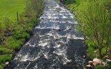 thumbnail - Fischtreppe Neubukow