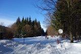 thumbnail - Winterwandern am Rennsteig