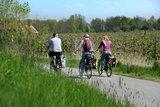 thumbnail - Radfahrer auf der Obstroute im Frühjahr
