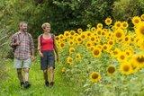 thumbnail - Wanderweg neben Sonnenblumen