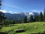 thumbnail - Blick auf Alpspitz- und Zugspitzgebirge