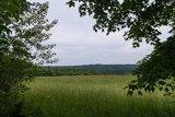 thumbnail - Aussicht über Wiesen