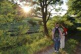 thumbnail - Unterwegs auf dem Medebacher Bergweg von Dreislar nach Medelon.