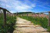 thumbnail - Schopflocher Moor
