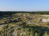 thumbnail - Ausgedehnte Dünengebiete charakterisieren die Küste bei St. Peter-Ording.