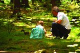 thumbnail - Im Eichhörnchen-Wald