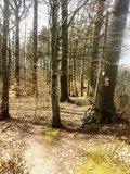 thumbnail - Trailabschnitt Nähe Burg Stettenfels - Untergruppenbach