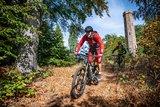 thumbnail - Mountainbiker auf dem Eschkopf Tour 1 Rodalben
