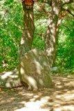 thumbnail - Der Stein der weisen Zufriedenheit auf dem Nollen