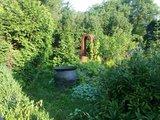 thumbnail - Skulpturengarten des Künstlers Erich Heuschneider in Walpertskirchen