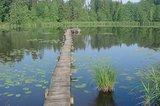 thumbnail - Wer sich über den Steg traut, sitzt an dessen Ende auf einer Bank mitten auf dem Neusee.