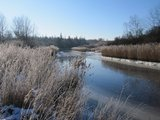 thumbnail - Rostocker Heide im Winter