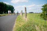 thumbnail - Deichradweg