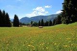 thumbnail - Bergwiesen bei der Gundhütte