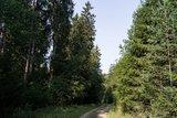 thumbnail - Forstweg