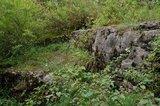 thumbnail - In diesem kleinen Steinbruch sammelte Mörike Versteinerungen.