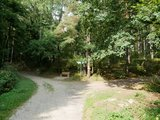 thumbnail - Links in den Wald in Richtung Kappl
