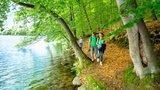 thumbnail - Pfad am Seeufer des Schmalen Luzin in der Feldberger Seenlandschaft
