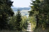 thumbnail - Wanderweg mit Ausblick