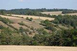 thumbnail - Blick auf Lämmertsberg in Richtung Westen, auf die Steinriegellandschaft am Seilingsberg.