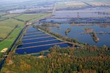 thumbnail - Das Naturschutzgebiet Fischteiche aus der Vogelperspektive