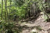 thumbnail - Auftakt-Trail am Sandberg
