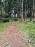 thumbnail - Weg zum Holzweible